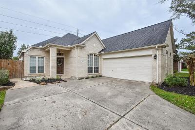 Pearland Single Family Home For Sale: 3919 Summerfield Drive