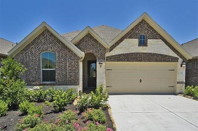 Conroe Single Family Home For Sale: 2622 Ivy Wood Lane