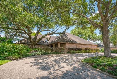 Friendswood Single Family Home For Sale: 119 Dorado Drive