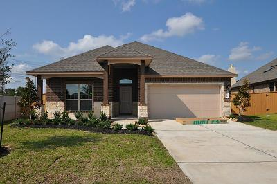 League City, League Single Family Home For Sale: 2518 Pisoni