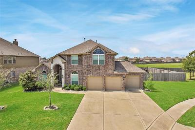 Galveston County, Harris County Single Family Home For Sale: 8423 Postano Bluff Drive