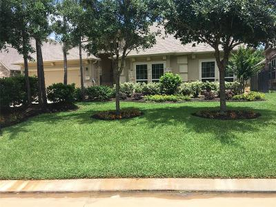 Tomball Single Family Home For Sale: 22 Caprice Bend Place