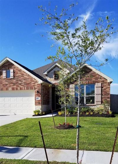 Texas City Single Family Home For Sale: 902 White Willow Drive