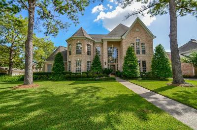 Katy Single Family Home For Sale: 20603 Ivory Creek Lane