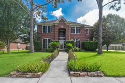 Friendswood Single Family Home For Sale: 409 Meadow Glen Road