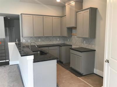 Houston Single Family Home For Sale: 729 Janisch Street