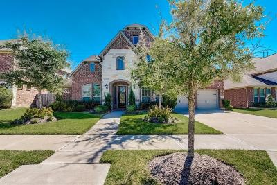 Sugar Land Single Family Home For Sale: 4019 Scenic Valley Lane