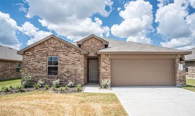 Rosenberg Single Family Home For Sale: 6322 Indigo Cliff Lane