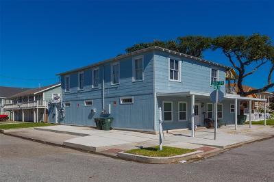 Galveston Multi Family Home For Sale: 1128 Avenue K