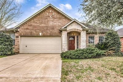 League City Single Family Home For Sale: 955 Umbria Lane
