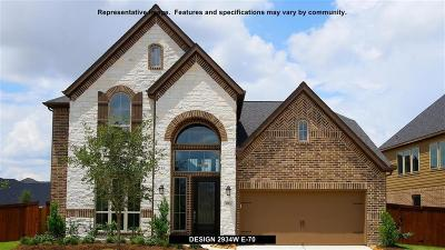 Fulshear Single Family Home For Sale: 28410 Sycamore Falls Lane