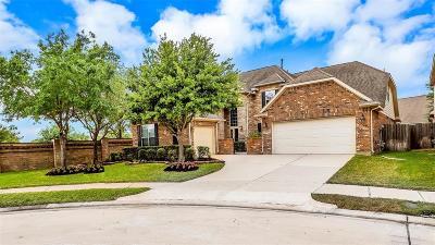 Katy Single Family Home For Sale: 26034 Juniper Stone Lane