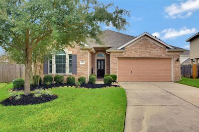 Spring Single Family Home For Sale: 21407 Snow Goose Court