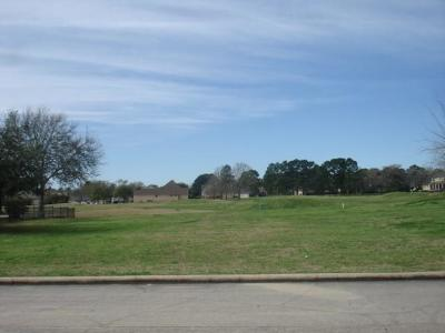 Montgomery Residential Lots & Land For Sale: 55 Naples Lane