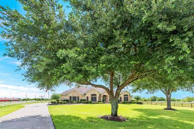 Katy Single Family Home For Sale: 310 Imperial Bend Lane