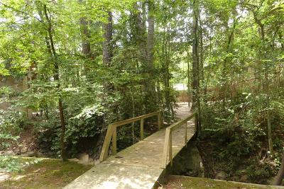 Conroe Single Family Home For Sale: 464 Chancellorsville Park