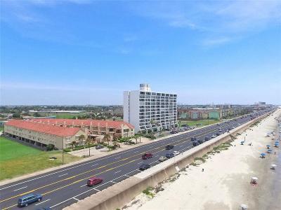 Galveston County Rental For Rent: 7312 Seawall Boulevard #122