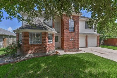 Galveston County Rental For Rent: 943 Chase Park Drive