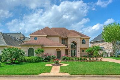 Montgomery Single Family Home For Sale: 256 Green Cove Drive