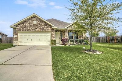 Tomball Single Family Home For Sale: 23302 E Pine Ivy Lane