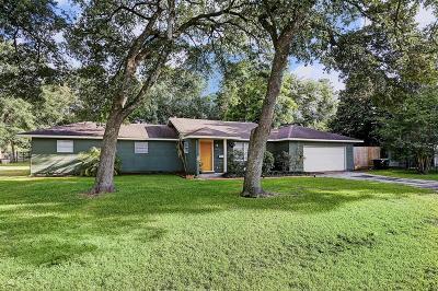 Houston Single Family Home For Sale: 801 Martin Street