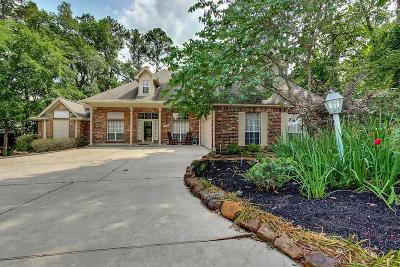 Montgomery Single Family Home For Sale: 221 N Woodside Lane
