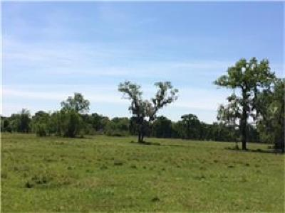 Waller Farm & Ranch For Sale: 1119 Bowler Road