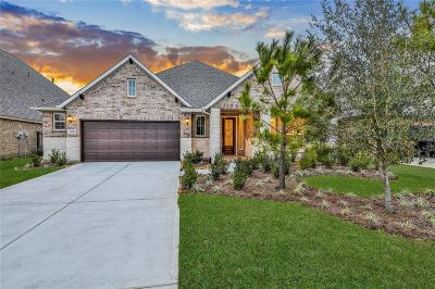 Spring Single Family Home For Sale: 4087 Northern Spruce Drive