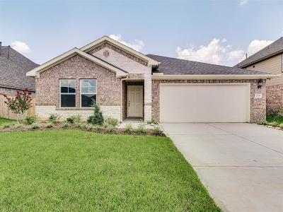 Manvel Single Family Home For Sale: 2703 Cutter Court