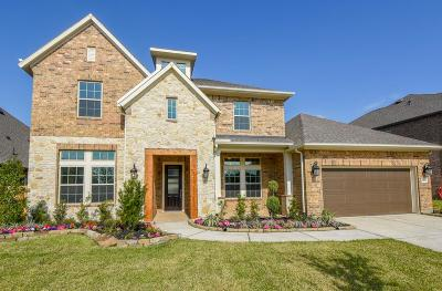 Tomball Single Family Home For Sale: 12614 Spellbrook Point Lane