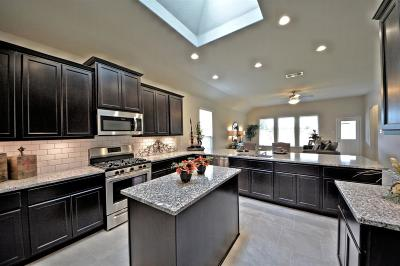 Katy Single Family Home For Sale: 28703 Forest Pass