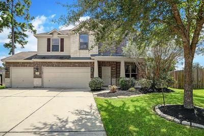 Spring Single Family Home For Sale: 19807 Brookway Cedar Court