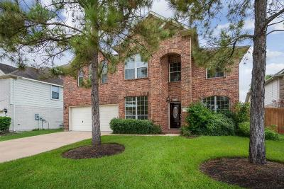 Pearland Single Family Home For Sale: 2208 Rocky Cove Court