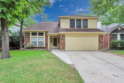 Houston Single Family Home For Sale: 5006 Otter Peak Drive
