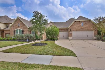Katy Single Family Home For Sale: 3307 Rumbling Rock Lane