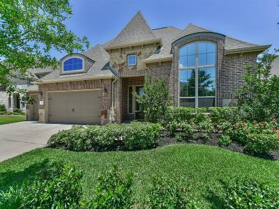 Katy Single Family Home For Sale: 2110 Summer Gardens Lane