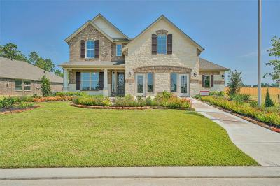 The Woodlands Single Family Home For Sale: 136 Bloomhill