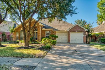 Houston Single Family Home For Sale: 17218 Kiowa River Lane
