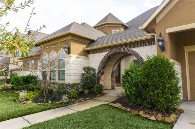 Pearland Single Family Home For Sale: 11910 Chisel Ridge