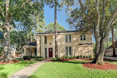 Houston Single Family Home For Sale: 12027 Riverview Drive
