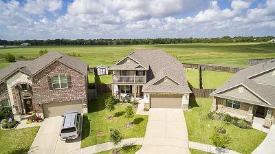 League City Single Family Home For Sale: 6802 Persea Ridge Lane