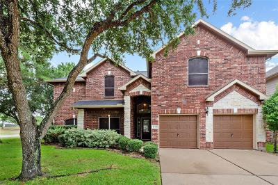 Houston Single Family Home For Sale: 11211 Bottlebrush Court