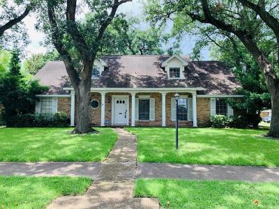 Houston Single Family Home For Sale: 231 Viceroy Drive
