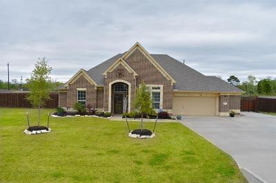 Baytown Single Family Home For Sale: 4611 Clearwater Drive