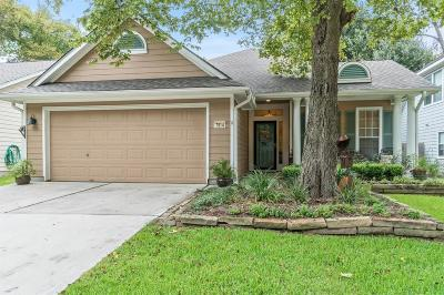 Houston Single Family Home For Sale: 7914 Sinfonia Drive