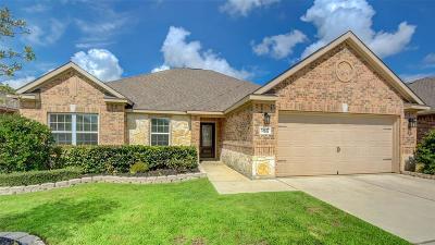 Hockley Single Family Home For Sale: 20627 Silver Tea Avenue