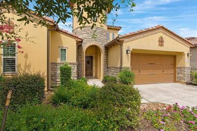 San Antonio Single Family Home For Sale: 22343 Viajes