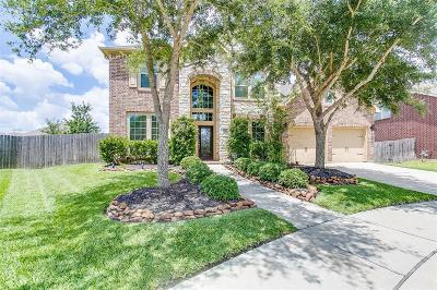 Pearland Single Family Home For Sale: 13607 Wild Lilac Court