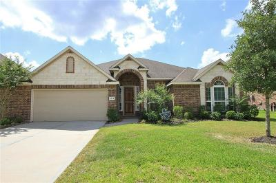 Houston Single Family Home For Sale: 6134 Aspen Pass Drive