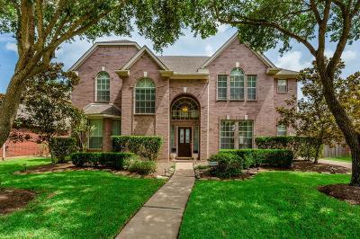 Sugar Land Single Family Home For Sale: 4719 Plato Park Drive